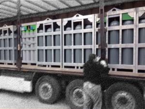 gas cylinder bundels on truck